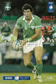 Ireland v Wales 2004 rugby  Programme