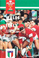 Wales v Italy 1994 rugby  Programme
