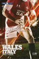 Wales v Italy 2010 rugby  Programmes