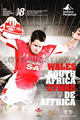 Wales v South Africa 2008 rugby  Programmes